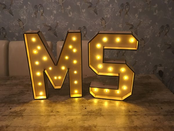 Large Standing Light Up Letters – Battery powered